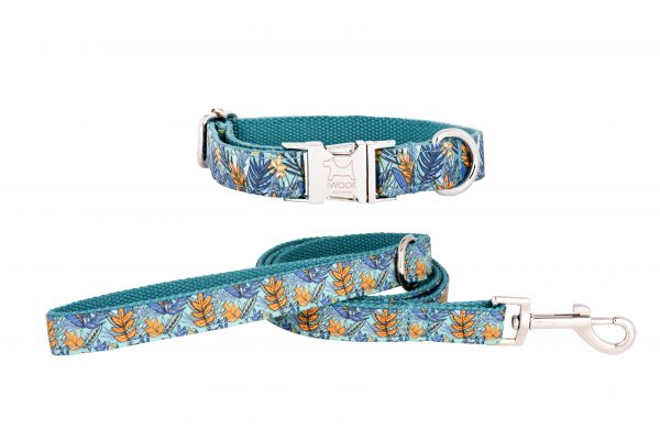Moorland designer dog collar and dog lead set by IWOOF