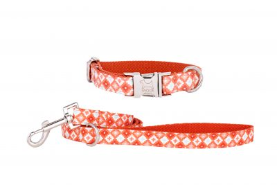 Marmalade designer dog collar and matching dog lead by IWOOF