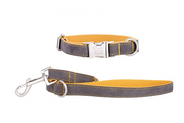 Seal Grey designer dog collar and dog lead by IWOOF
