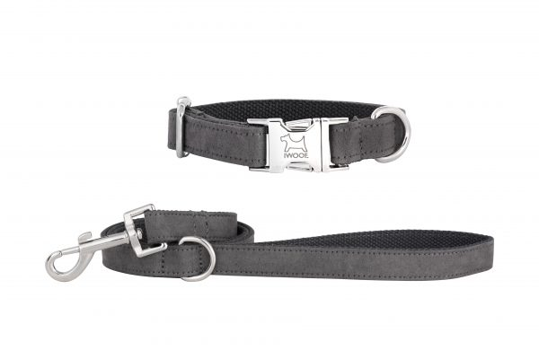 Dolphin designer dog collar and matching dog lead by IWOOF