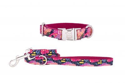Sweeties designer dog collar and matching designer dog lead by IWOOF