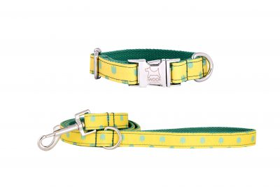 Desert designer dog collar and matching dog lead by IWOOF