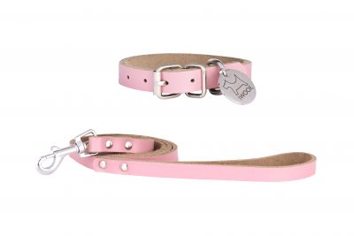 Morwenna designer dog collar and matching designer dog lead by IWOOF