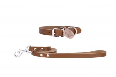 Morwenna designer dog collar and matching designer dog lead in tan by IWOOF