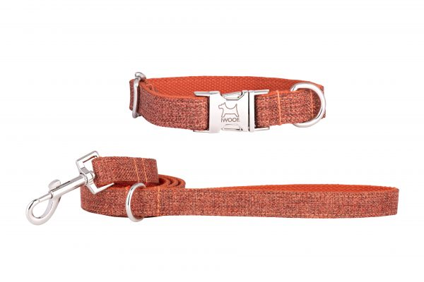 Sun Rise designer dog collar and matching dog lead by IWOOF