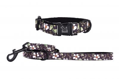 Cadgwith designer dog collar and dog lead with black buckle