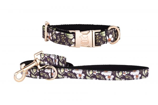 Cadgwith designer dog collar and dog lead by IWOOF