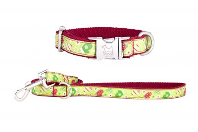 Christmas dog collar and dog lead