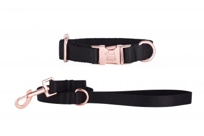 panther designer dog collar and matching dog lead by IWOOF