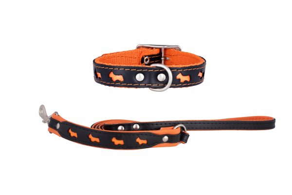 Reflex designer dog collar and dog lead by IWOOF