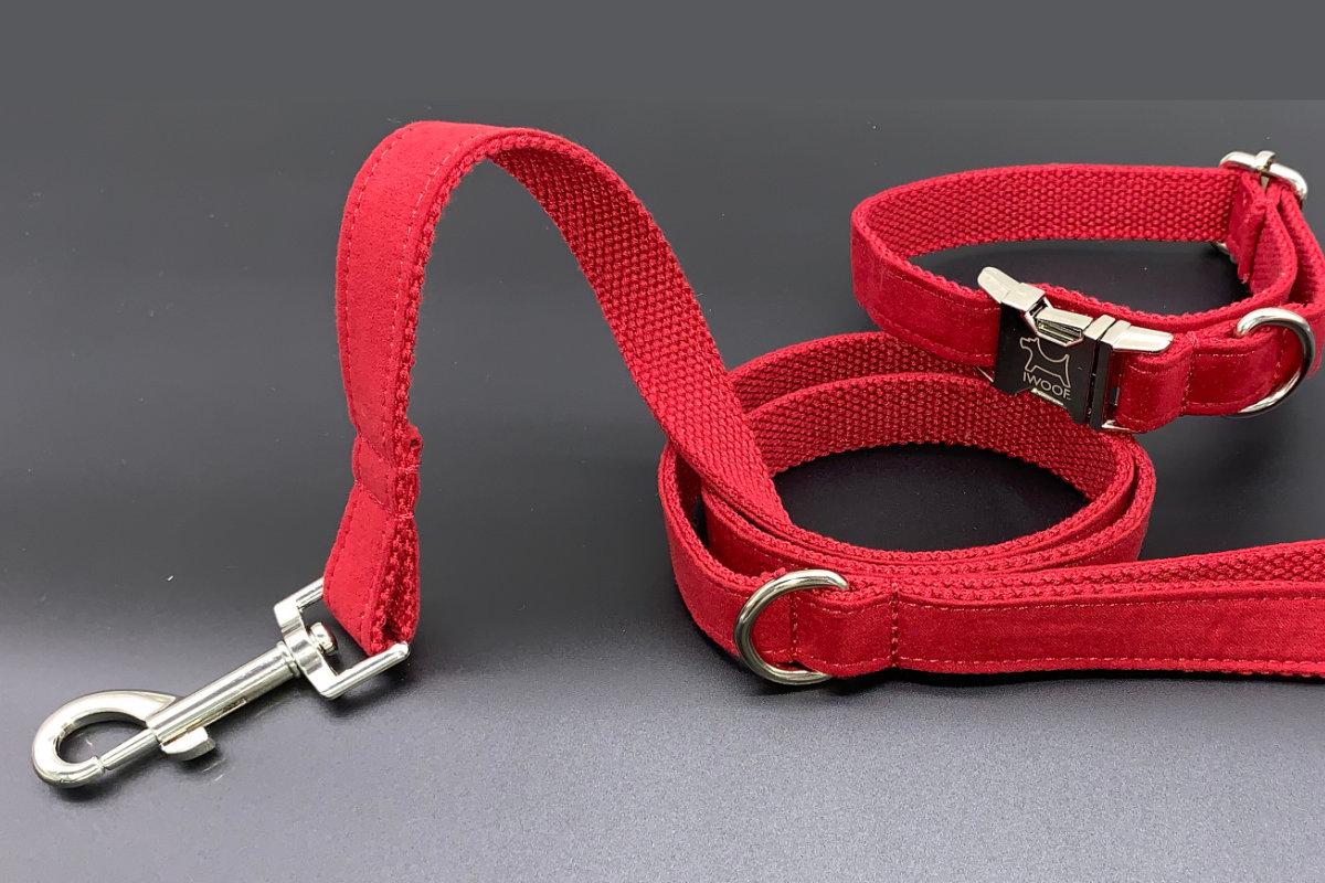 dog-lead-collar-set
