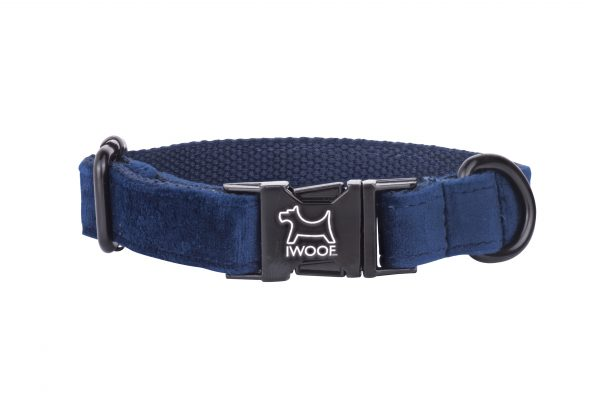 Sapphire designer dog collar with black buckle
