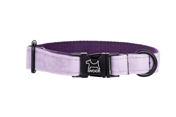 Lavender designer dog collar by IWOOF with black buckle