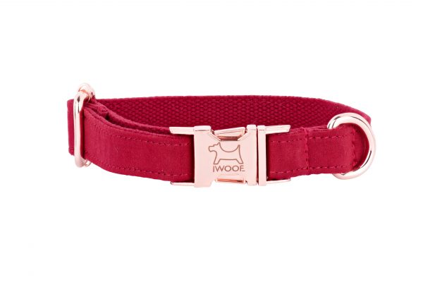 Designer Dog Collar in Strawberry