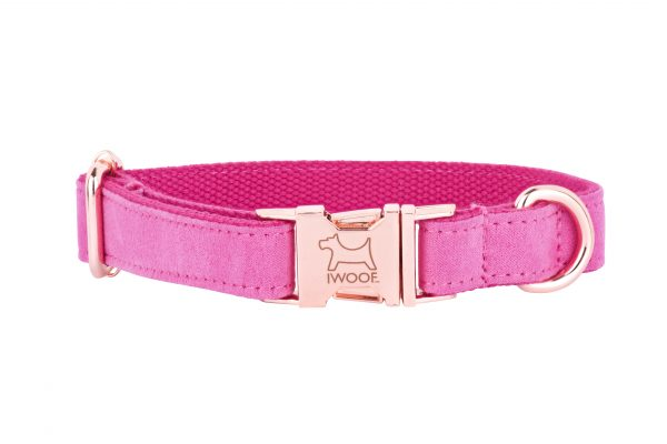 PINK designer dog collar by IWOOF with rose gold buckle