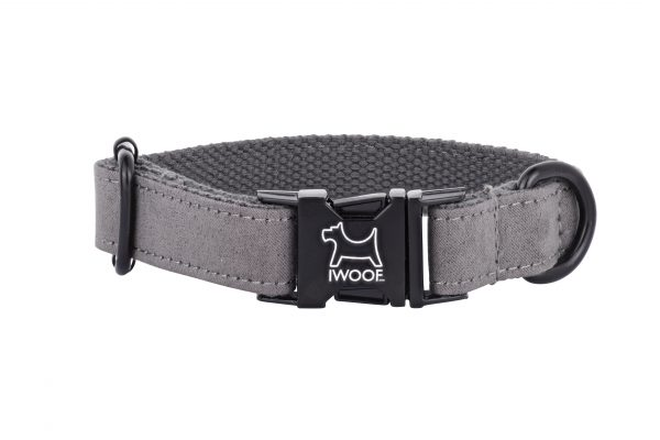 Dolphin designer dog collar by IWOOF
