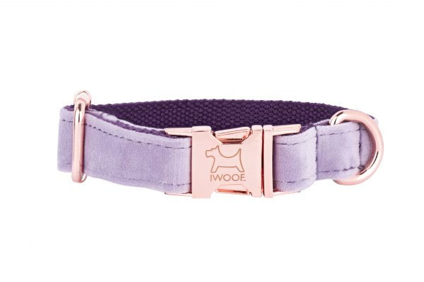 Lavender designer dog collar by IWOOF with rose gold buckle