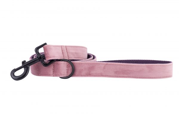 Pink Panther designer dog lead by IWOOF with black fittings