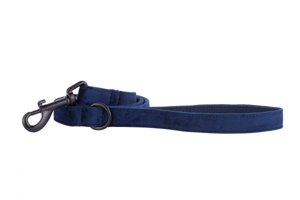 Sapphire designer dog lead by IWOOF with black fittings