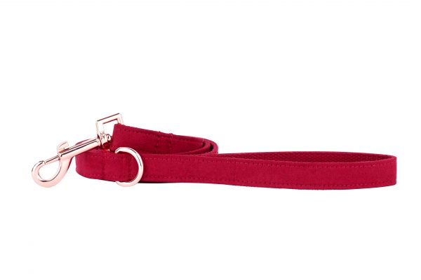 Strawberry designer dog lead by IWOOF