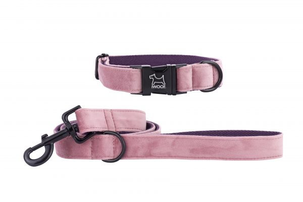 Pink Panther designer dog collar and matching dog lead by IWOOF with black fittings