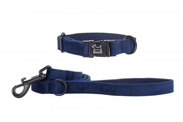 Sapphire designer dog collar and matching dog lead by IWOOF with black fittings