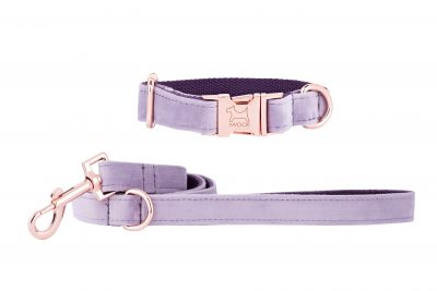 Lavender designer dog collar and matching dog lead by IWOOF with rose gold fittings