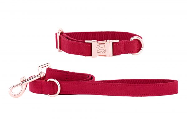 Strawberry designer dog collar and lead by IWOOF