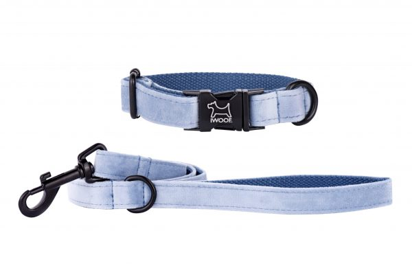 Sky designer dog collar and matching designer dog lead by IWOOF with black fittings