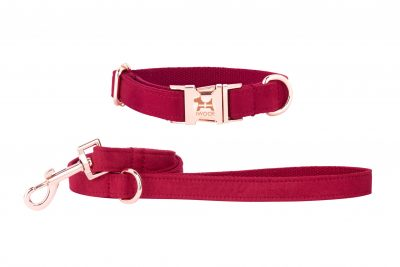 Designer dog collar and lead in Cornish Red by IWOOF