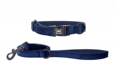 CORNISH BLUE DESIGNER DOGCOLLAR AND LEAD HAND MADE BY IWOOF WITH BLACK FITTINGS