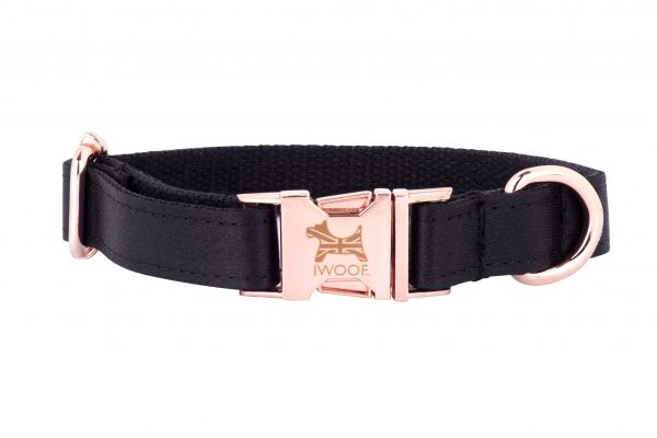 Dartmoor Designer Dog Collar by IWOOF