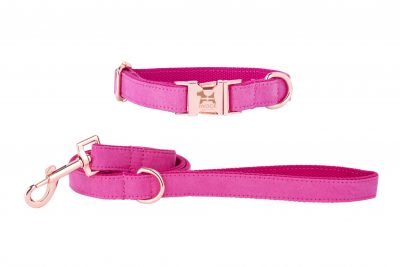 PINK with Cornish flag designer dog collar and lead by IWOOF