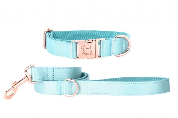 ACE designer dog collar and lead in JADE by IWOOF with rose gold buckle