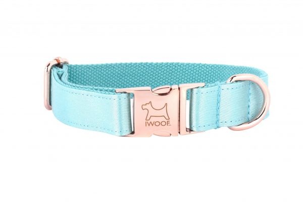 ACE designer dog collar in Jade by IWOOF with rose gold fittings