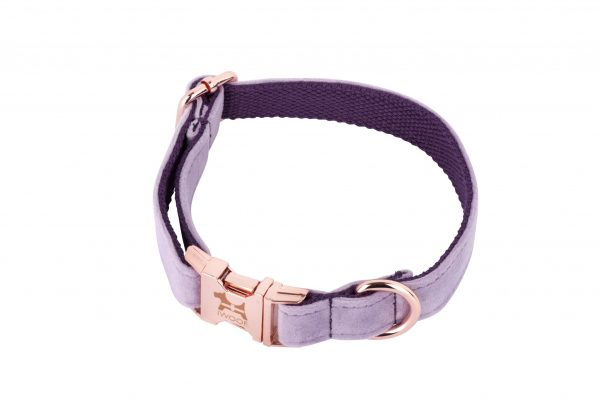 Lavender Cornish designer dog collar and lead hand made by IWOOF in rose gold