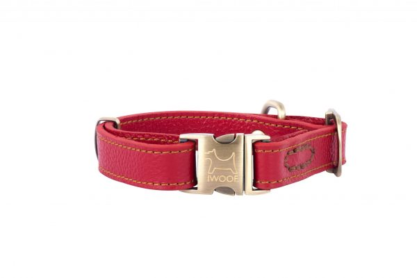 POLZEATH leather designer dog collar in red by IWOOF