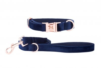 CORNISH BLUE designer dog collar and lead with rose gold fittings by IWOOF