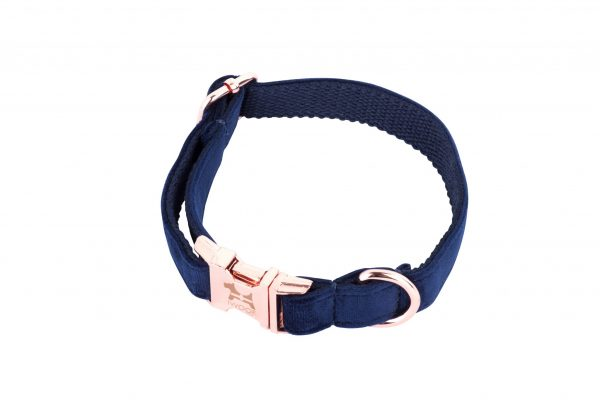 CORNISH BLUE designer dog collar by IWOOF with rose gold buckle