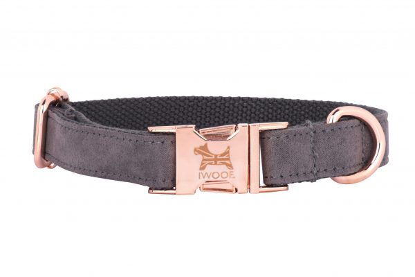 Dolphin designer dog collar with British flag and rose gold fittings by IWOOF