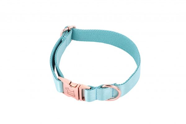 ACE designer dog collar by IWOOF in Jade with rose gold fittings by IWOOF