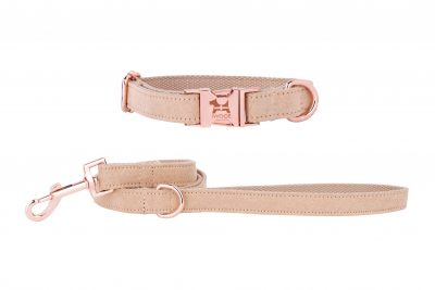 Cornish Sand designer dog collar and lead by IWOOF in Rose Gold