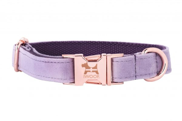 Lavender dog collar in rose gold with Cornish flag