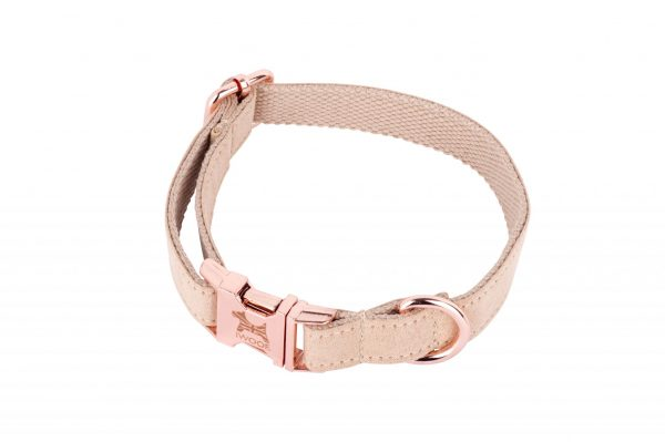 London designer dog collar by IWOOF with rose gold buckle