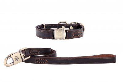 POLZEATH leather designer dog collar and lead in brown lay IWOOF