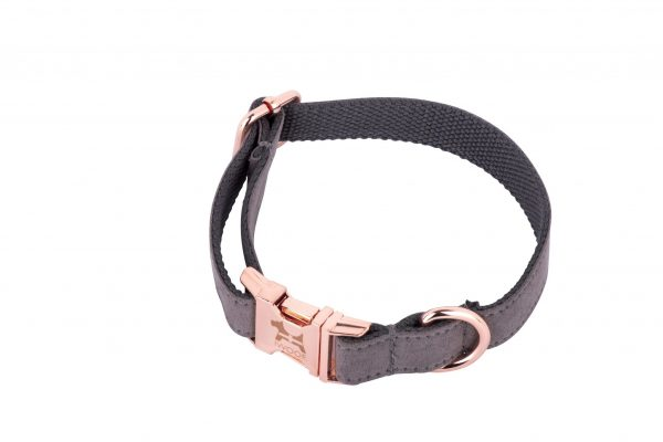 DOLPHIN designer dog collar by IWOOF with rose gold fittings and Cornish flag