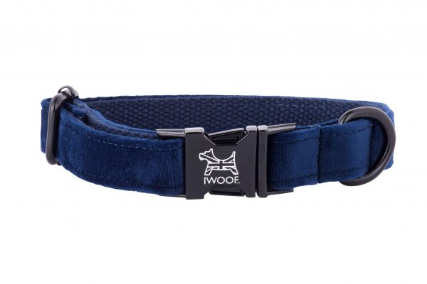 SAPPHIRE BLUE HAND MADE DESIGNER DOG COLLAR AND LEAD IN CRUSHED VELVET BY IWOOF