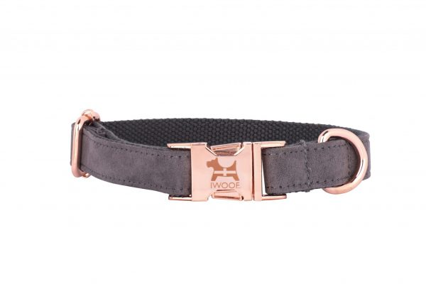 Dolphin designer dog collar by IWOOF with Cornish flag and rose gold fittings