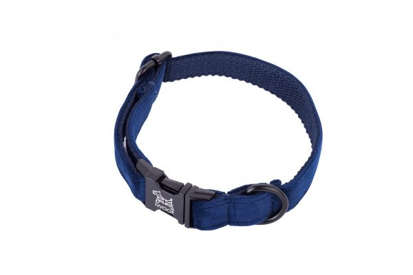 Sapphire Blue crushed velvet designer dog collar and lead hand made by IWOOF
