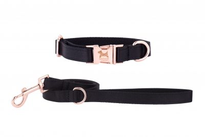 Dartmoor Designer Dog Collar and Lead by IWOOF